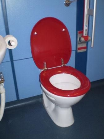 8 Best Images About Dementia Friendly Bathrooms On Pinterest Toilets Helpful Tips And Activities