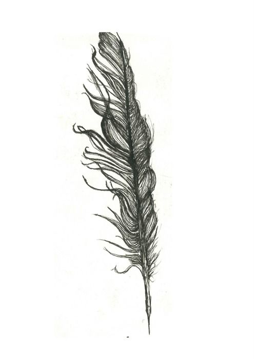 feather drawing tumblr - Google Search