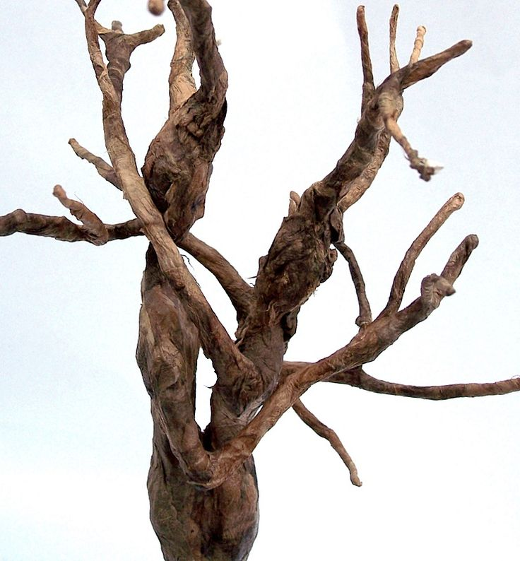 How to Make a Paper-Mâché Tree
