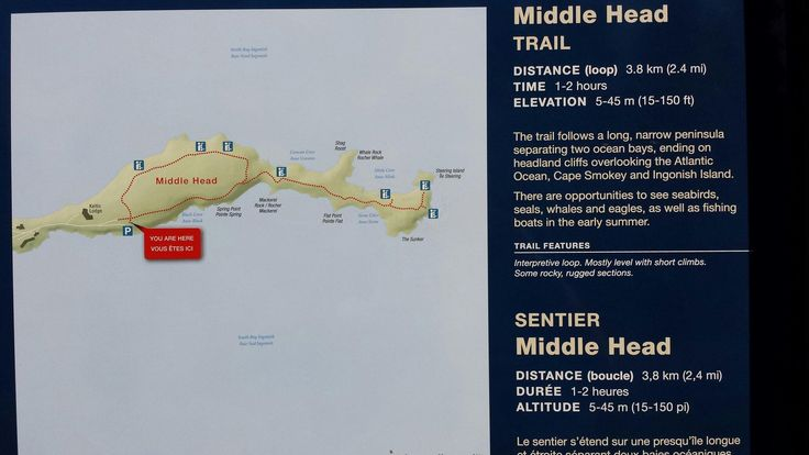 Middle Head Trail (Ingonish, Nova Scotia): Address, Phone Number, Attraction Reviews - TripAdvisor
