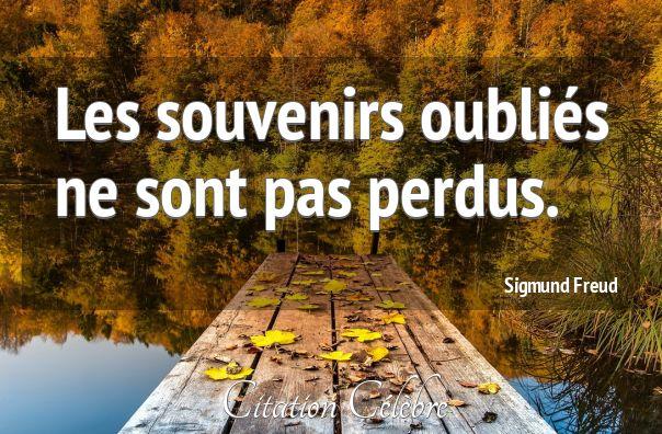 Citation Souvenirs & Oublies (Sigmund Freud - Phrase n°32777) - CITATION CÉLÈBRE