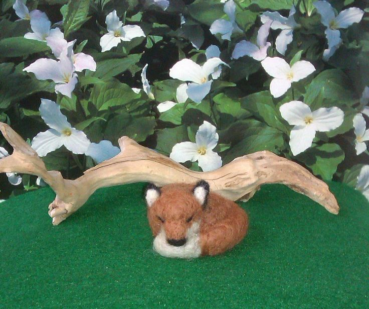 Ivy the Fox, 2014; needle felted sculpture by Holly Boone currently located at the Alberta Craft Council (Edmonton, AB) - SOLD!