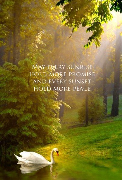 Image result for may every sunrise hold more promise