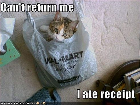 I LOVE  this one!!!! It's cute, hilarious and original!: Ate Receipt, Funny Pics, Return, Crazy Cat, Case, Walmart, Silly Cat, Animal, Cat Lady