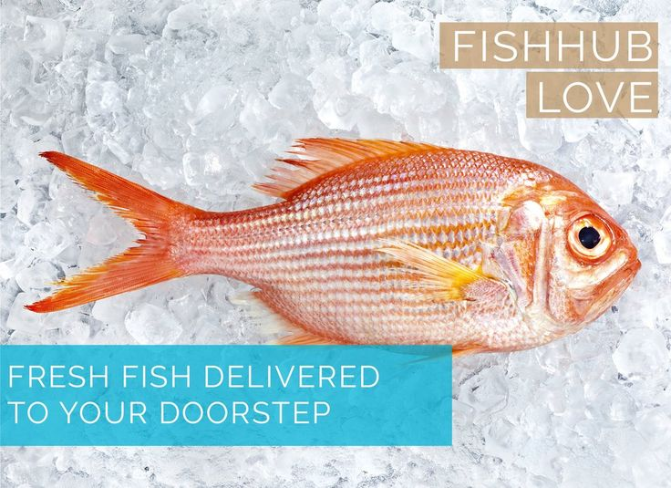 Online Fish Market - Get online fish delivery of fresh fish in Abu Dhabi by a reputed online fish store. Free delivery over 50AED, direct from waters to your home