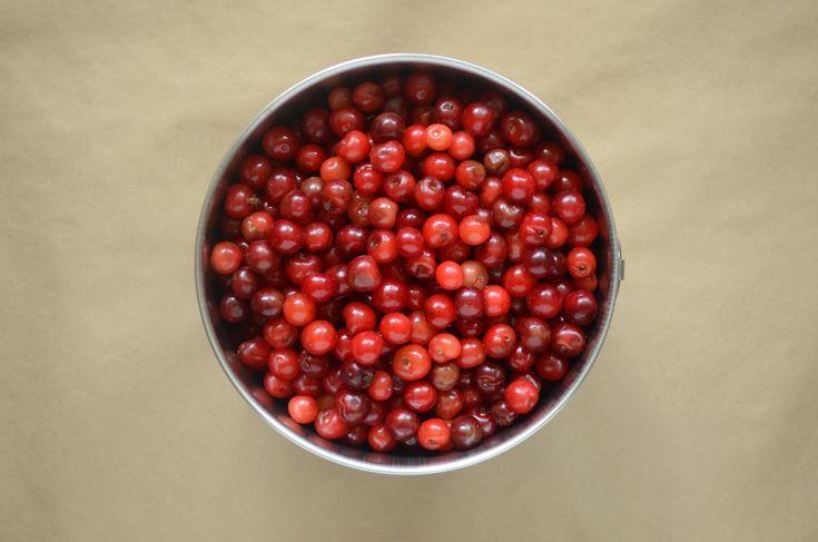 Low sugar sour cherry jam, Food in jars