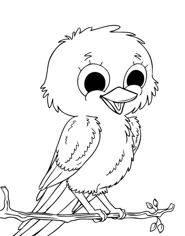Cute Little Birds Coloring Page