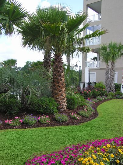 Portfolio   Gardens By Design   Myrtle Beach SC
