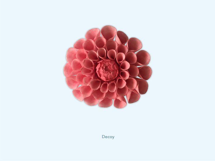 Decoy - Dahlia