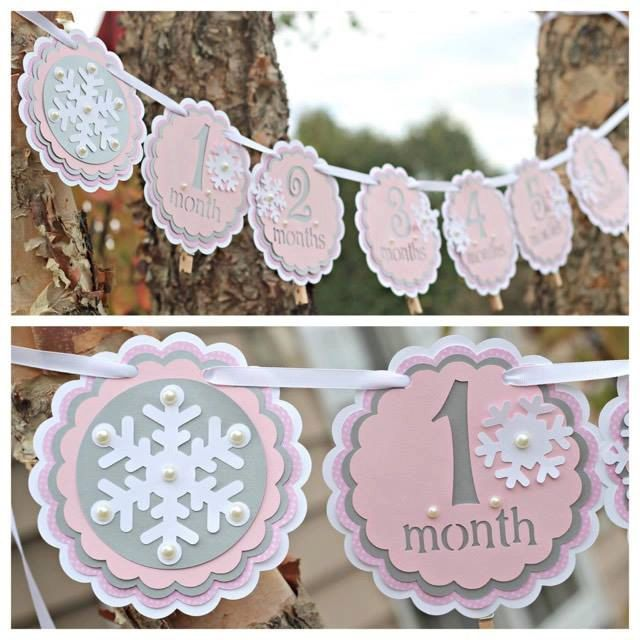 Girl 1st / First Birthday Winter ONEderland/Wonderland 12 month photo memory banner.  Pink/silver/snowflake party decoration.  First Year. by CharmingTouchParties on Etsy