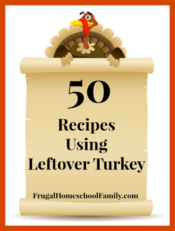 50 Recipes Using Leftover Turkey - Frugal Homeschool Family