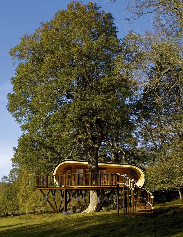 tree house: Modern Trees House, Tiny House, Favorite Places, Luxury Trees, Forests Ecoperch, Blue Forests, Tree Houses, Eco Perch, Luxury Treehouse