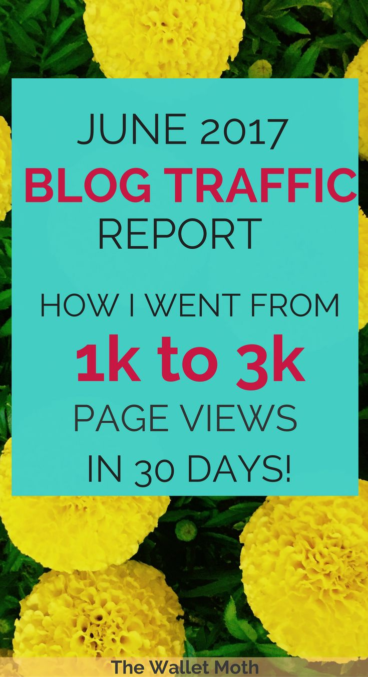 Blog Traffic Report, Social Media Update, Blogging Updates, Blog Income Report to show how I increased my blog page views and started making money blogging! Blog Traffic Report for June 2017.