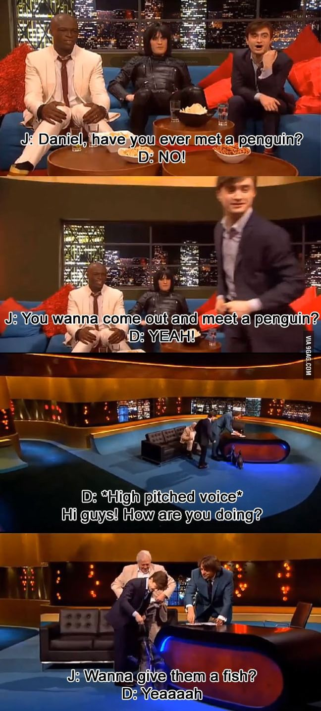 Gotta love Daniel Radcliffe ...and penguins