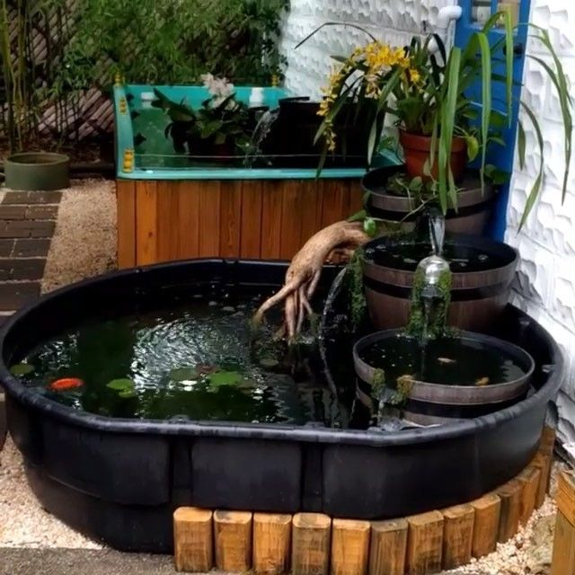 Aquascpr On Instagram Awesome 300 Gallon Pond Setup Find This Scape Aquarium Dwelling Aquascpr With Images Pond Aquarium Scape