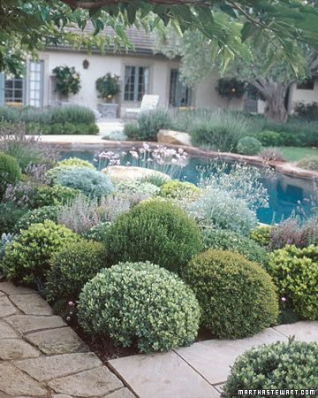 Although laying out a garden is never simple, you can get started on the right track by asking yourself five key questions and following the basic principles of good design.