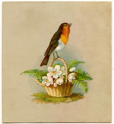 Vintage Graphic - Darling Robin on Basket - Holiday - The Graphics Fairy