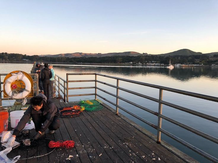 Another Expo365 crabbing day. Not a great result today but its just about hanging out with good people. Thanks to Tyler for lending crab nets. #crabbing #bodega #expedition365 #expo365 #friends #WeDontWheelEveryWeekendAndWeDontPretendWeDo #pier #crabs #fishing