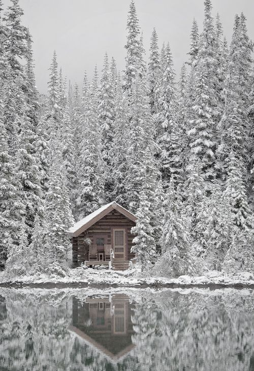 Stay in a little cabin in the woods - in the snow | Places ...