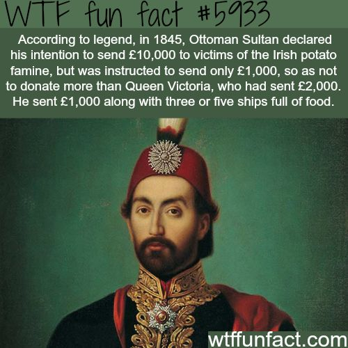The generosity of the Turkish sultan - WTF fun facts
