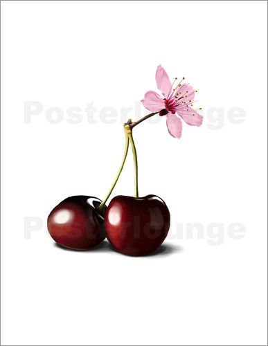 Poster Cherry Blossom art | decor | wall art | inspiration | contemporary | home decor | ideas | gift