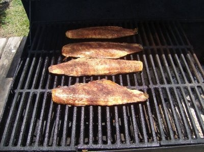 21 best images about smoked fish on pinterest different for Best fish to grill