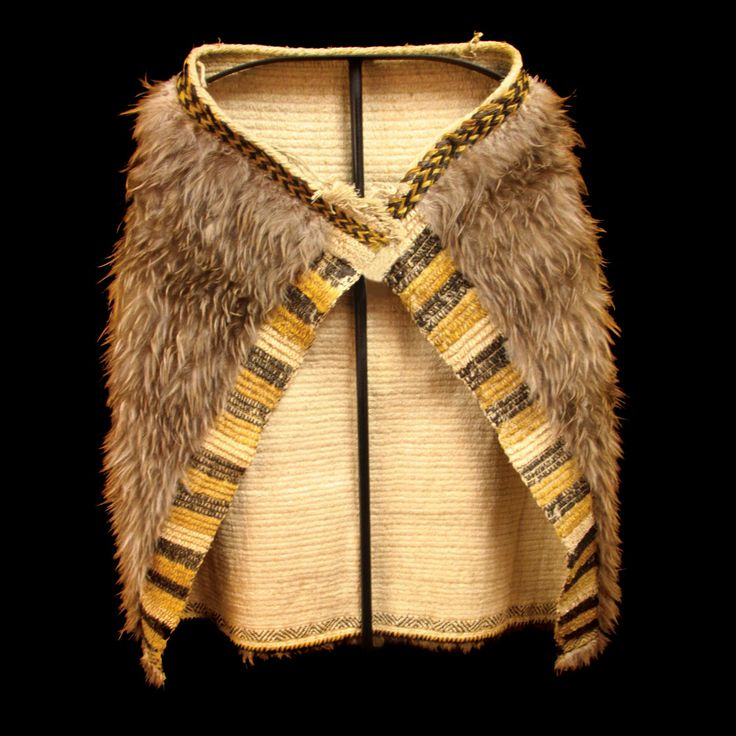 Superb Kahu kiwi - kiwi feather cloak, adorned with mature