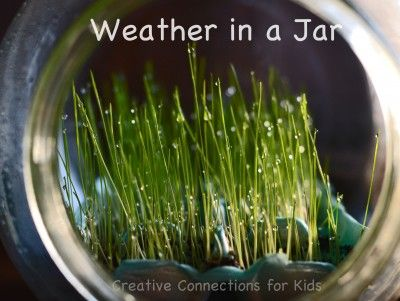 Fun science experiment.  It would be fun to do one inside and one outside the jar to show growth differences.Growing Plants, Activities For Kids, Jars Crafts, Crafts To Teaching Kids, Science Activities, In A Jars, Weather Activities, Kids Science, Weather United