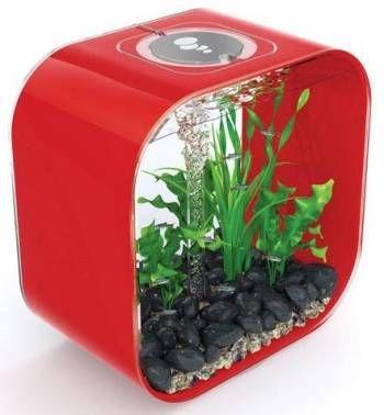 biOrb Life 30 Red Aquarium fish tank for sale.