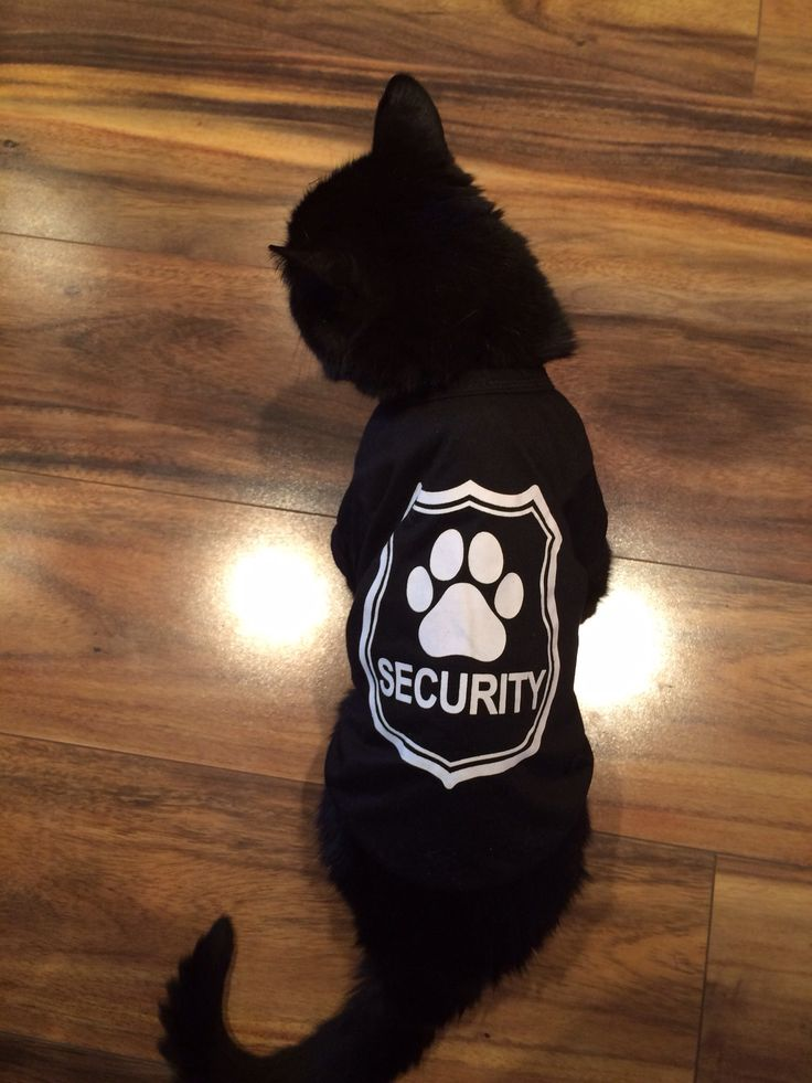 Lord Jett ::: Head of Home Security.