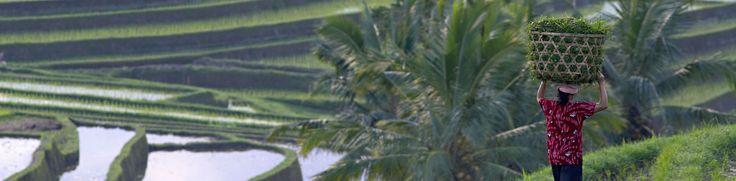 Voyage Bali & Lombok – Voyageurs du Monde
