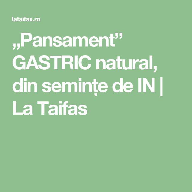 """Pansament"" GASTRIC natural, din semințe de IN | La Taifas"