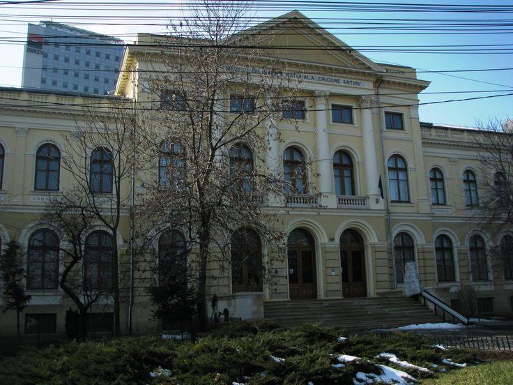 Bucharest Architecture Romania Natural History Museum Grigore Antipa