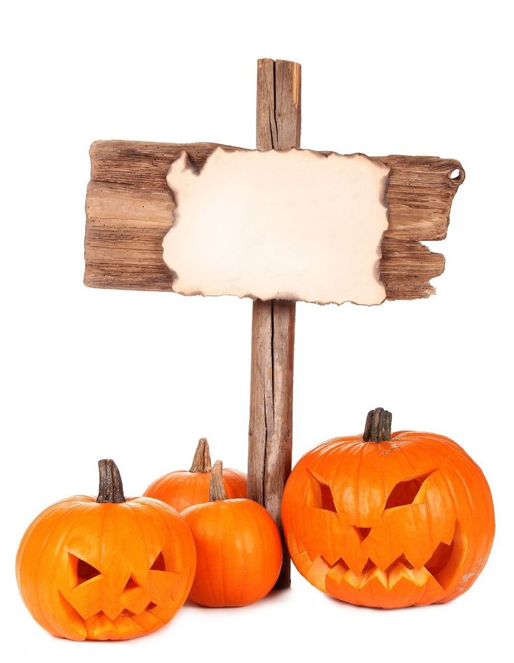 $28.90 (Buy here: https://alitems.com/g/1e8d114494ebda23ff8b16525dc3e8/?i=5&ulp=https%3A%2F%2Fwww.aliexpress.com%2Fitem%2F200cm-150cm-6-5-5ft-photography-backdrop-pumpkin-sign-Halloween-background-vinyl-backdrops-for-photography%2F2025242066.html ) photography backdrop pumpkin sign  Halloween background  vinyl backdrops for photography WSJ-004 for just $28.90
