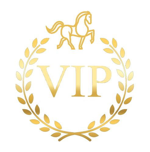 Sylvia Kerr Jewellery VIP Logo Join our VIP club for exclusive offers and more 🍾