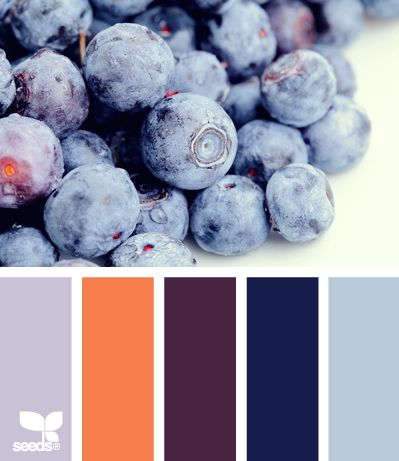 blueberry bright.... colors i want for my living room. love the orange and deep purple