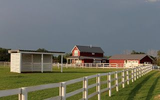 Life in a Little Red Farmhouse: Horse Run-in & Sheep Shelter