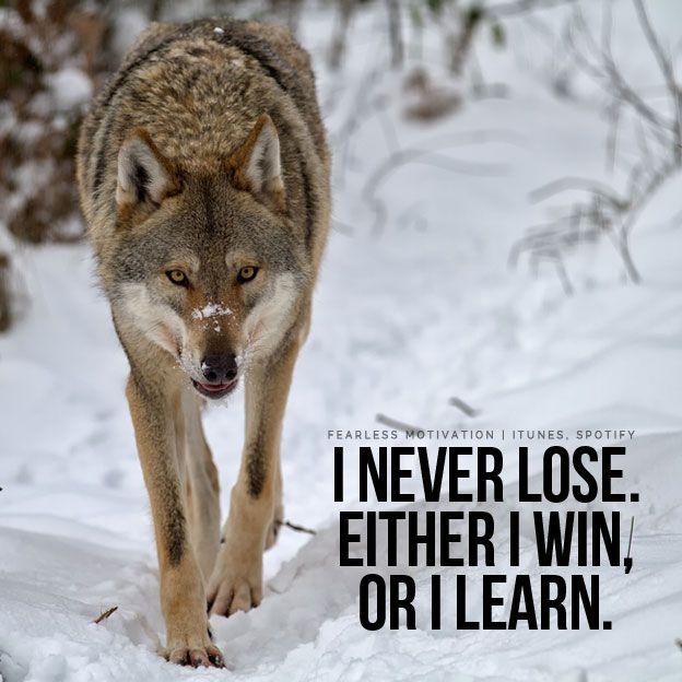 Afbeeldingsresultaat voor wolf quotes