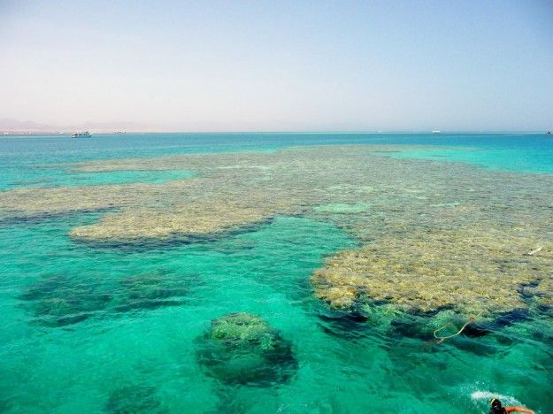 Verde acqua marina