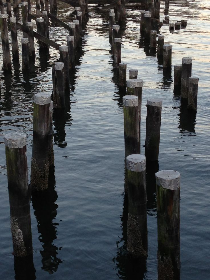 Pilings at the quay north Vancouver