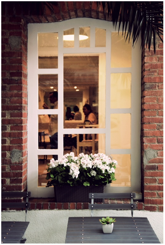 Detalle ventana jardín