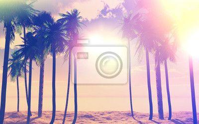 Scegli un fotomurale tridimensionale, landscapes, giorno festivo - palme 3d e…