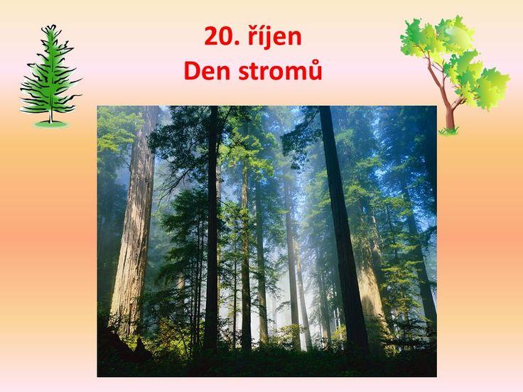 Výsledek obrázku pro den stromů projekt