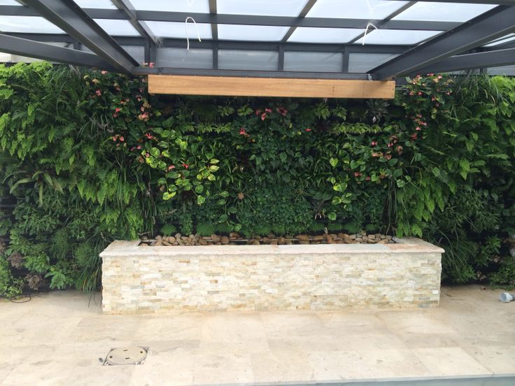 Vertical garden at our Seaforth project