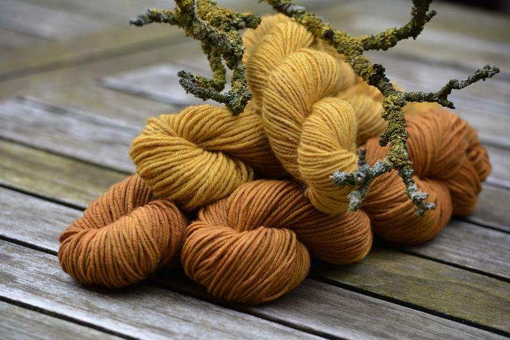 Färben mit Apfelbaumrinde inklusive Flechten