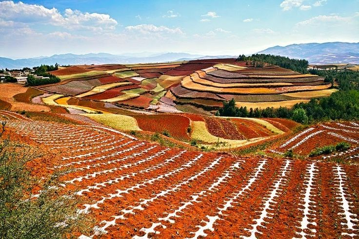 Some 250 kilometers northeast of Kunming, the capital of China's Yunnan Province, lies Dongchuan, a rural area with the world's most imposing red earth. Spread over vast terraced fields, Dongchuan's unusual brownish-red color comes from its rich deposit of iron and copper...