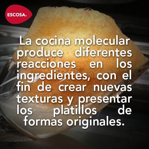 La cocina molecular produce diferentes reacciones for Quien invento la cocina molecular