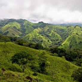 Monteverde Cloud Forest Reserve, North Puntarenas es muy bonito. Se puede ver impresionantes vistas de la montaña.