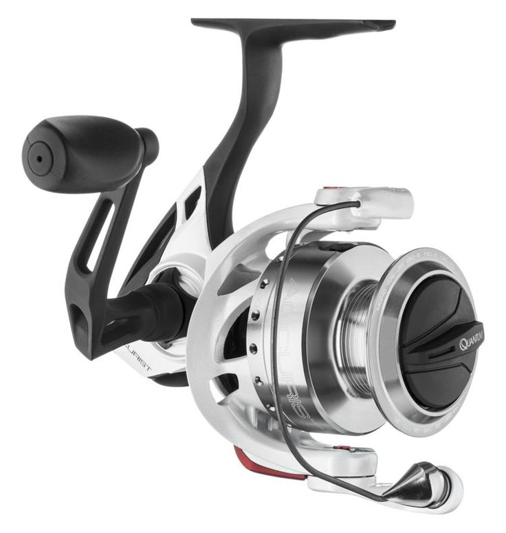 Quantum accurist pt spinning reel shops spinning and for Quantum fishing reel