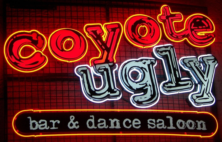 I danced on the bar here! at Coyote Ugly Bar & Dance Saloon - New York New York - Las Vegas